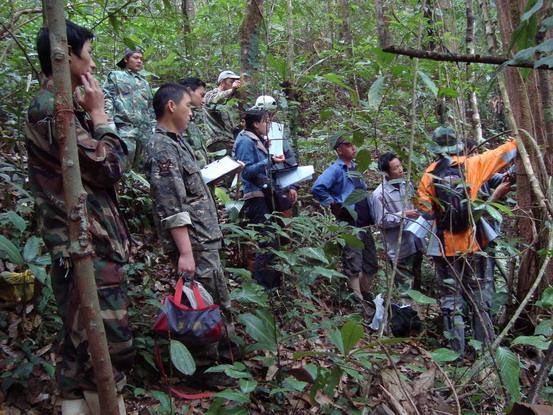 树木胸径测量环安装培训现场